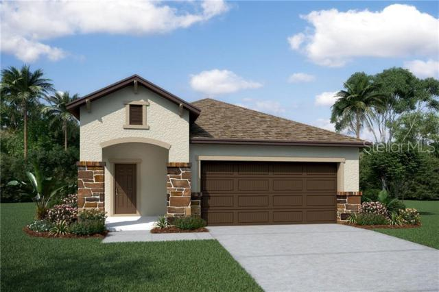 2809 Alpine Meadow Lane, Kissimmee, FL 34744 (MLS #O5792679) :: Griffin Group