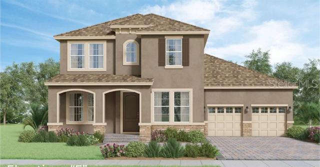 10201 Atwater Bay Drive, Winter Garden, FL 34787 (MLS #O5792983) :: Bustamante Real Estate