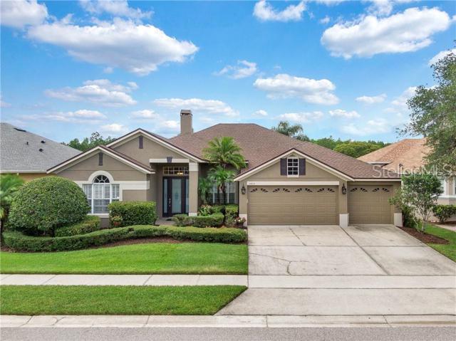 14614 Riviera Pointe Drive, Orlando, FL 32828 (MLS #O5793119) :: Armel Real Estate