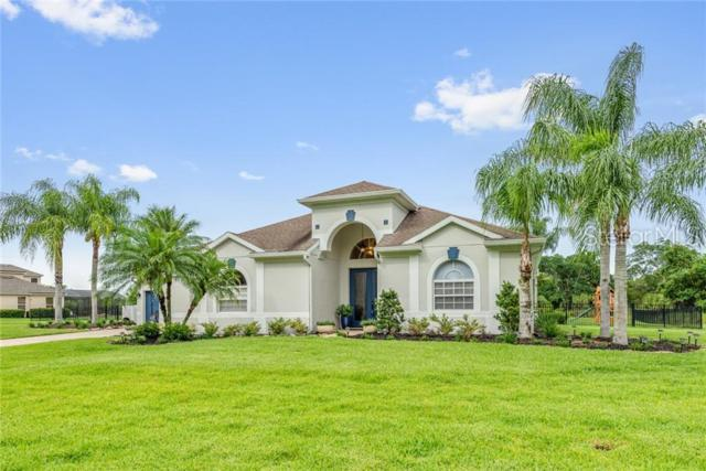678 Osprey Lakes Circle, Chuluota, FL 32766 (MLS #O5793239) :: Cartwright Realty