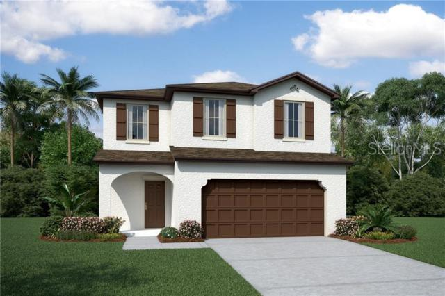 2817 Priego Boulevard, Kissimmee, FL 34744 (MLS #O5793240) :: Griffin Group