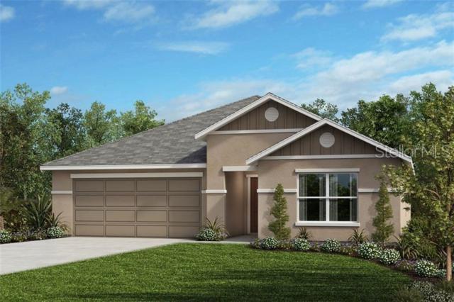 7429 Ibis Drive, Lakeland, FL 33810 (MLS #O5793244) :: Cartwright Realty