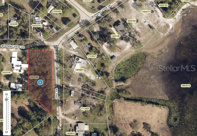 Morning View Drive, Paisley, FL 32767 (MLS #O5793412) :: The Duncan Duo Team