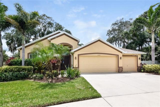 10204 Holland Road, Riverview, FL 33578 (MLS #O5793577) :: Jeff Borham & Associates at Keller Williams Realty