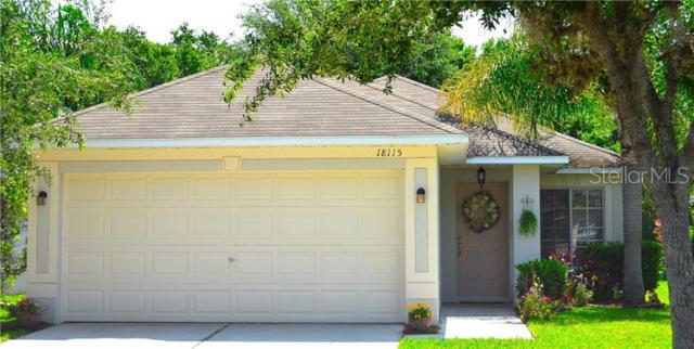18115 Portside Street, Tampa, FL 33647 (MLS #O5793646) :: Team Bohannon Keller Williams, Tampa Properties
