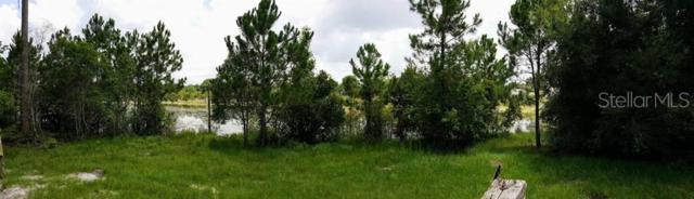 720 Enterprise Osteen Road, Osteen, FL 32764 (MLS #O5793721) :: Cartwright Realty