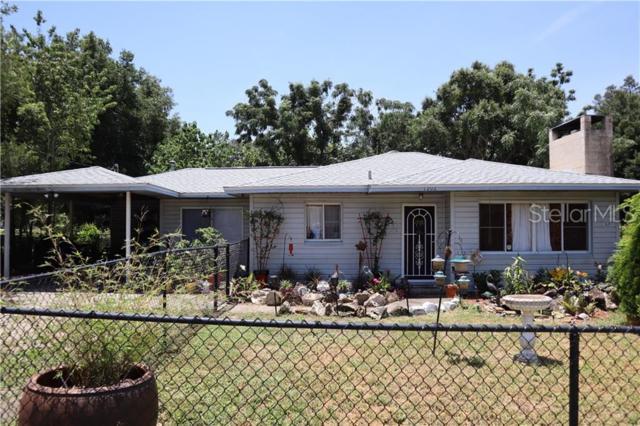 1202 Deidrich Court, Eustis, FL 32726 (MLS #O5793743) :: Burwell Real Estate
