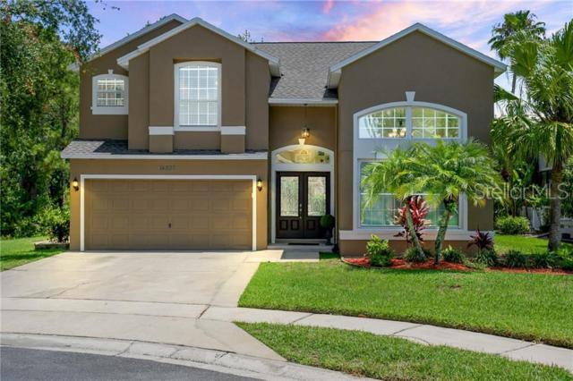 14207 Squirrel Run #1, Orlando, FL 32828 (MLS #O5793755) :: Armel Real Estate