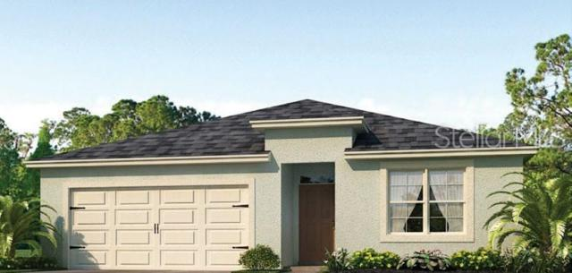 2487 White Lilly Drive, Kissimmee, FL 34747 (MLS #O5793947) :: Griffin Group