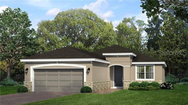 467 Briarbrook Way, Deland, FL 32724 (MLS #O5794042) :: Cartwright Realty