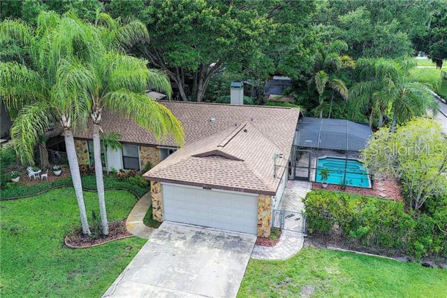 214 Maple Avenue, Palm Harbor, FL 34684 (MLS #O5794059) :: Team 54