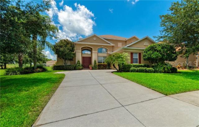 3300 Tumbling River Drive, Clermont, FL 34711 (MLS #O5794072) :: Dalton Wade Real Estate Group