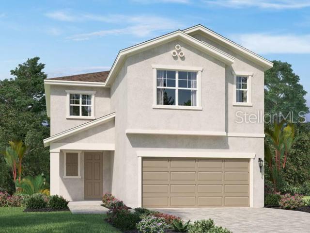 5514 Los Robles Court, Palmetto, FL 34221 (MLS #O5794194) :: Team 54