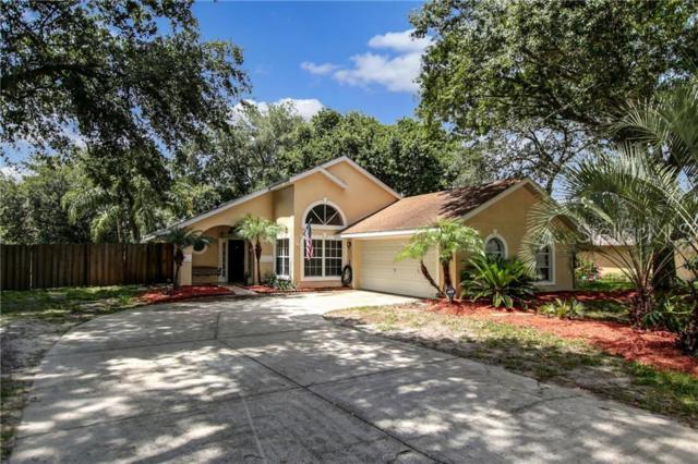 297 Hidden View Drive, Groveland, FL 34736 (MLS #O5794241) :: Griffin Group