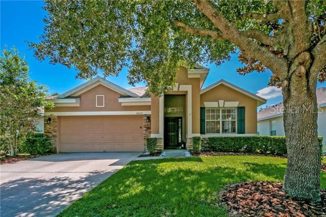10072 Fenrose Terrace, Orlando, FL 32827 (MLS #O5794292) :: CENTURY 21 OneBlue