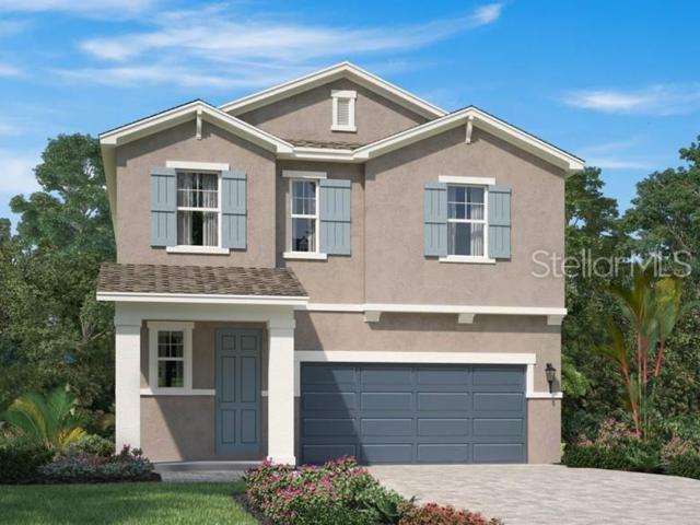 5424 Los Robles Court, Palmetto, FL 34221 (MLS #O5794304) :: Team 54