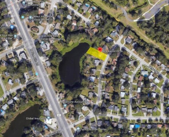 924 Alecon Drive, Orlando, FL 32808 (MLS #O5794487) :: Griffin Group