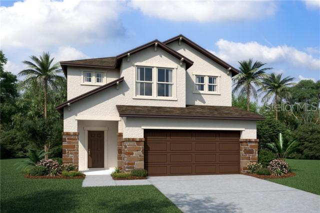 2805 Alpine Meadow Lane, Kissimmee, FL 34744 (MLS #O5794563) :: Griffin Group