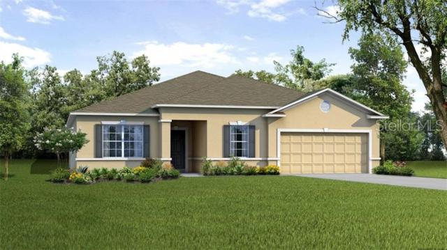 25318 Aysen Drive, Punta Gorda, FL 33983 (MLS #O5794842) :: The Duncan Duo Team