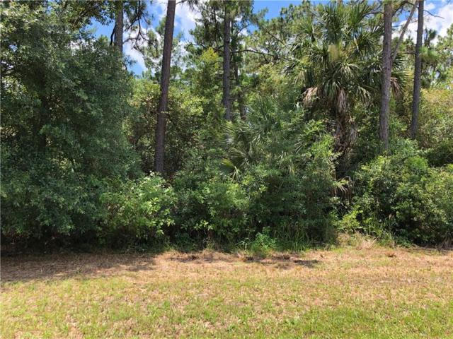 1361 Howland Boulevard, Deltona, FL 32738 (MLS #O5795261) :: Premium Properties Real Estate Services
