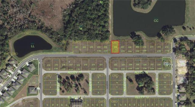 2301 Marshfield Preserve Way, Kissimmee, FL 34746 (MLS #O5796116) :: Bustamante Real Estate