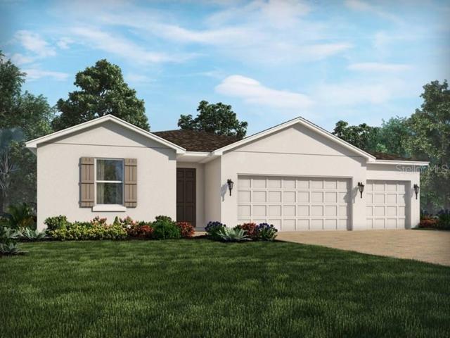 30228 Five Farms Avenue, Wesley Chapel, FL 33543 (MLS #O5796579) :: Florida Real Estate Sellers at Keller Williams Realty