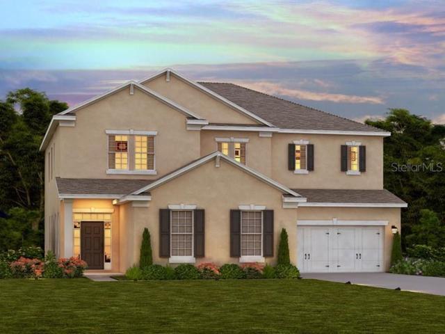 4436 Olympic Club Way, Wesley Chapel, FL 33543 (MLS #O5796588) :: Florida Real Estate Sellers at Keller Williams Realty