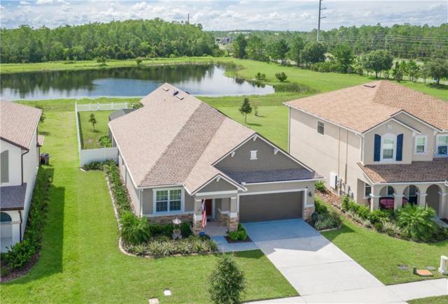 3389 Cordgrass Place, Saint Cloud, FL 34773 (MLS #O5796611) :: Team Bohannon Keller Williams, Tampa Properties