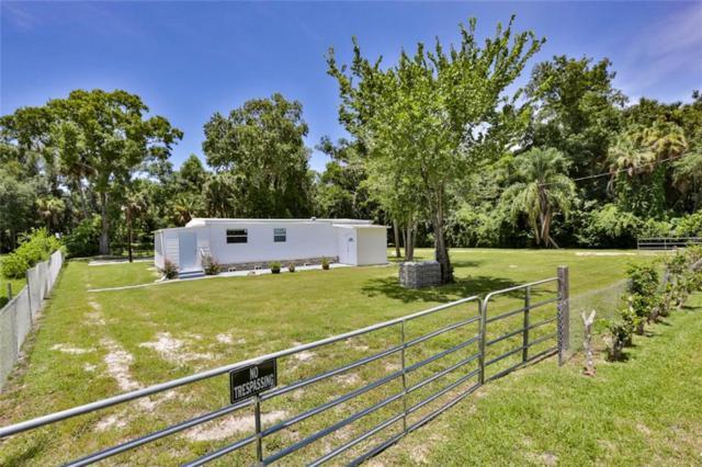 900 Cavedo Street, New Smyrna Beach, FL 32168 (MLS #O5797087) :: Florida Life Real Estate Group