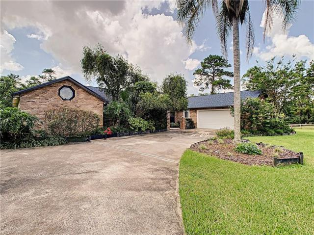 21166 Reindeer Road, Christmas, FL 32709 (MLS #O5797318) :: The Light Team