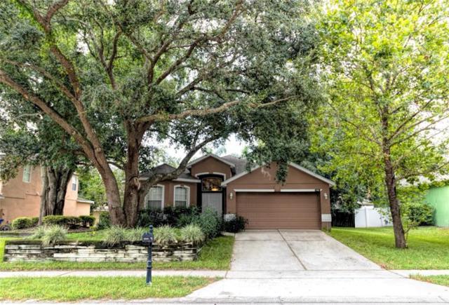 1982 Ancient Oak Dr, Ocoee, FL 34761 (MLS #O5797511) :: Team Bohannon Keller Williams, Tampa Properties