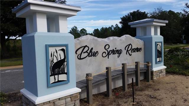 448 Long And Winding Road, Groveland, FL 34737 (MLS #O5798304) :: Cartwright Realty