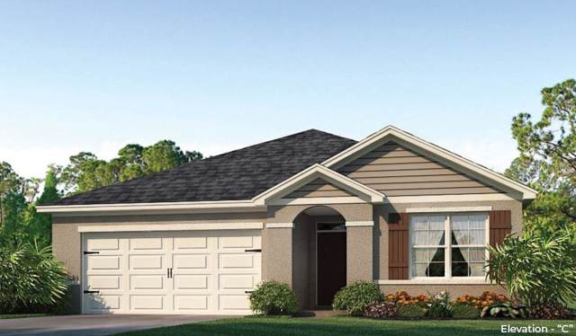 3097 Bethpage Loop, Mount Dora, FL 32757 (MLS #O5798829) :: Team 54