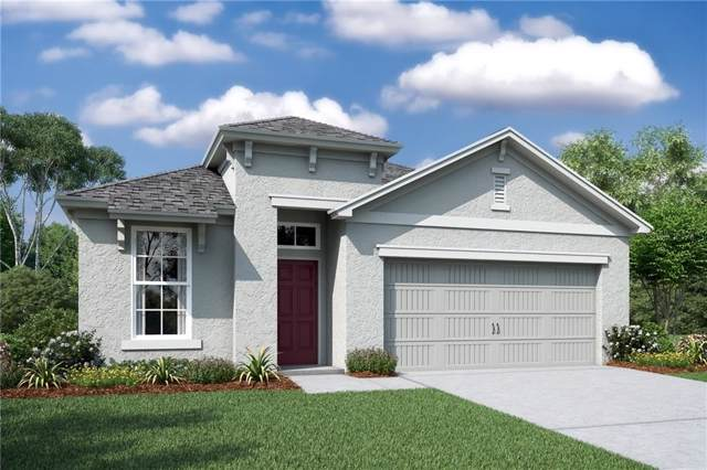 21656 Pearl Crescent Court, Land O Lakes, FL 34637 (MLS #O5799327) :: Bustamante Real Estate