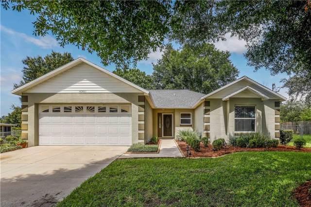 40801 W 6TH Avenue, Umatilla, FL 32784 (MLS #O5799363) :: Cartwright Realty