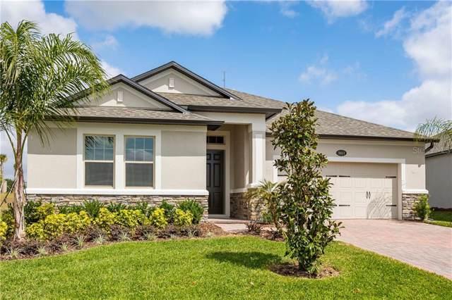 2411 Panoramic Circle, Apopka, FL 32703 (MLS #O5799439) :: American Realty