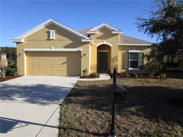 8748 Briggs Marsh Court, New Port Richey, FL 34654 (MLS #O5799460) :: Cartwright Realty