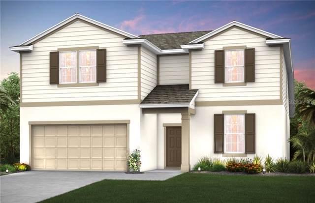 2172 Bur Oak Boulevard, Saint Cloud, FL 34771 (MLS #O5799582) :: American Realty