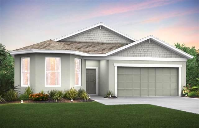 2244 Bur Oak Boulevard, Saint Cloud, FL 34771 (MLS #O5799710) :: American Realty