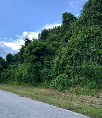 2327 Fern Palm Drive, Edgewater, FL 32141 (MLS #O5799897) :: Florida Life Real Estate Group