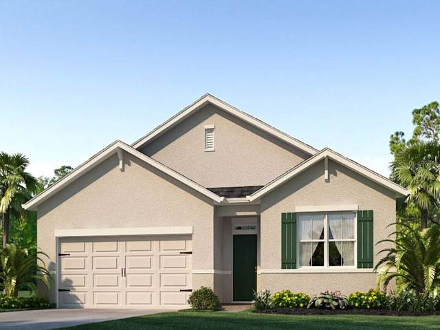 1811 Rain Lily Place, Saint Cloud, FL 34771 (MLS #O5799930) :: Lockhart & Walseth Team, Realtors