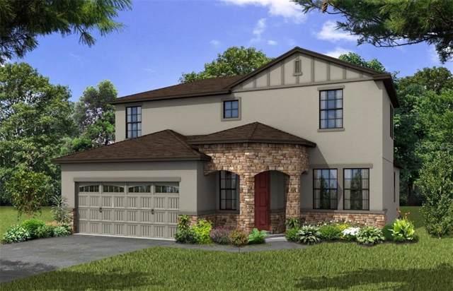5394 Carrara Court, Saint Cloud, FL 34771 (MLS #O5799956) :: Premium Properties Real Estate Services