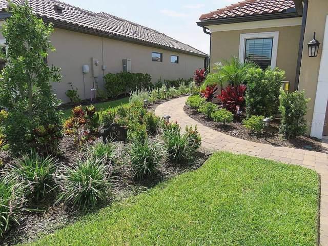 11700 Callisia Drive, Odessa, FL 33556 (MLS #O5800071) :: GO Realty