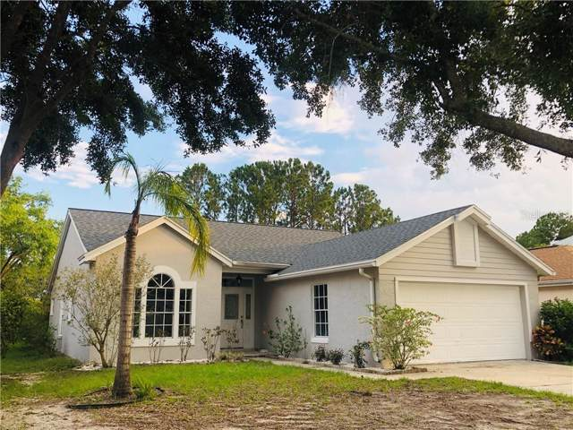 2752 Tolwroth Avenue, Orlando, FL 32837 (MLS #O5800259) :: Godwin Realty Group