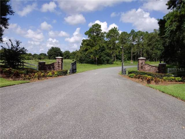 3175 Bright Lake Circle, Leesburg, FL 34748 (MLS #O5800300) :: Griffin Group