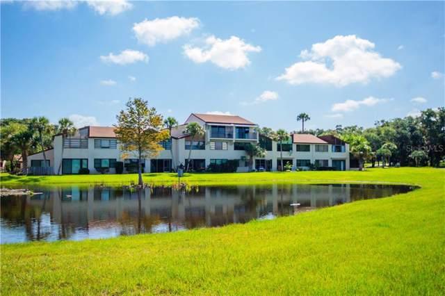 4300 Baywood Boulevard A-203, Mount Dora, FL 32757 (MLS #O5800651) :: Cartwright Realty