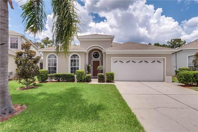 8107 Sun Palm Drive, Kissimmee, FL 34747 (MLS #O5800660) :: Baird Realty Group