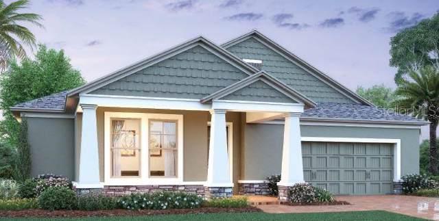 2277 Pontederia Court, Apopka, FL 32703 (MLS #O5800661) :: White Sands Realty Group