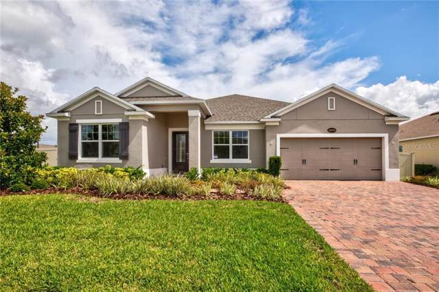 16075 Black Hickory Drive, Winter Garden, FL 34787 (MLS #O5800738) :: Bustamante Real Estate