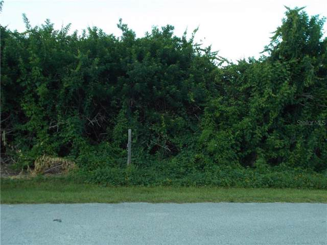 6308 Engram Road, New Smyrna Beach, FL 32169 (MLS #O5800760) :: Premium Properties Real Estate Services